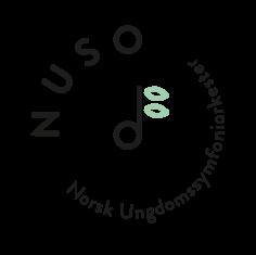 Norsk Ungdomssymfoniorkester